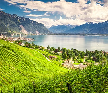 Apartments and flats for sale in the Canton of Vaud (Switzerland)